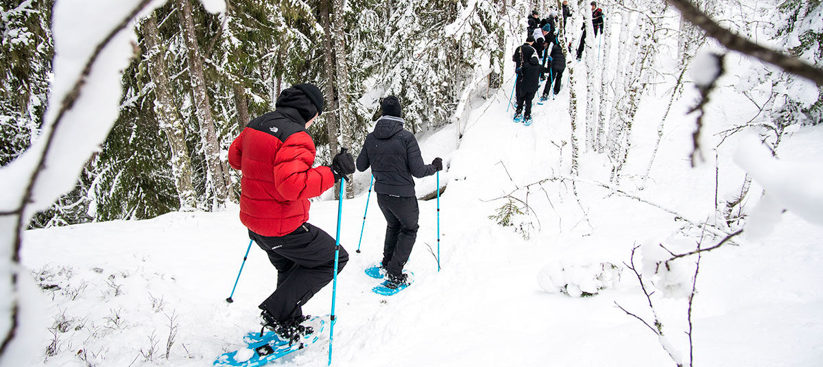 Snöskovandring i Järvsö